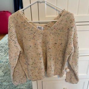 NEVER WORN Princess Polly V Neck sweater